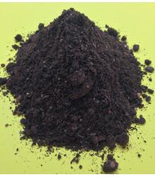 Špeciálny substrát pre citrusy - substrát pre pestovanie zo semien - 100 g