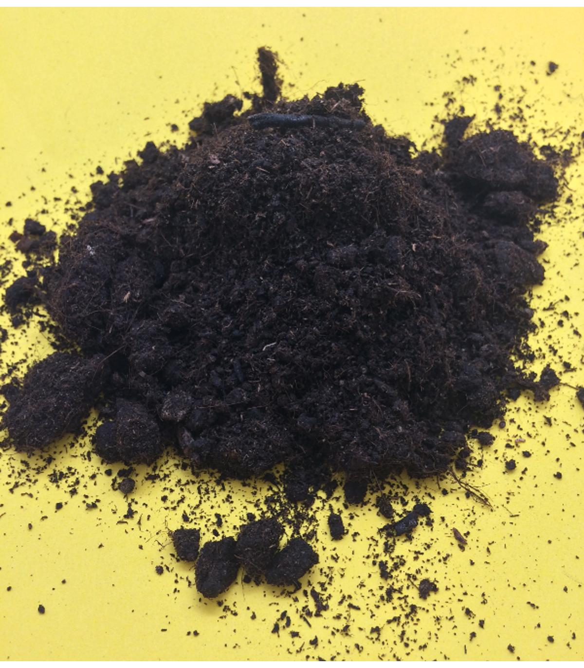 Špeciálny substrát pre palmy - 50 gr